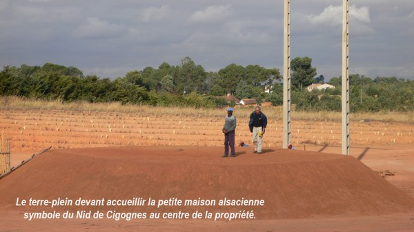 construction-nid-de-cigognes-14